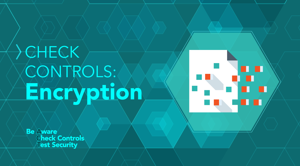 CHECK Controls: Protecting Cardholder Data with Encryption - Featured Image